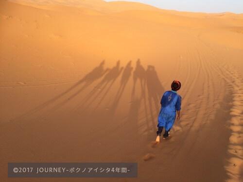 砂漠を歩くラクダの影